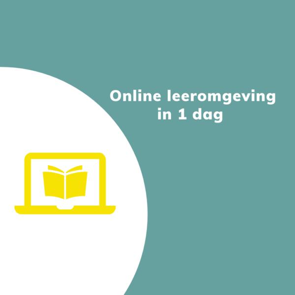 online leeromgeving in 1 dag